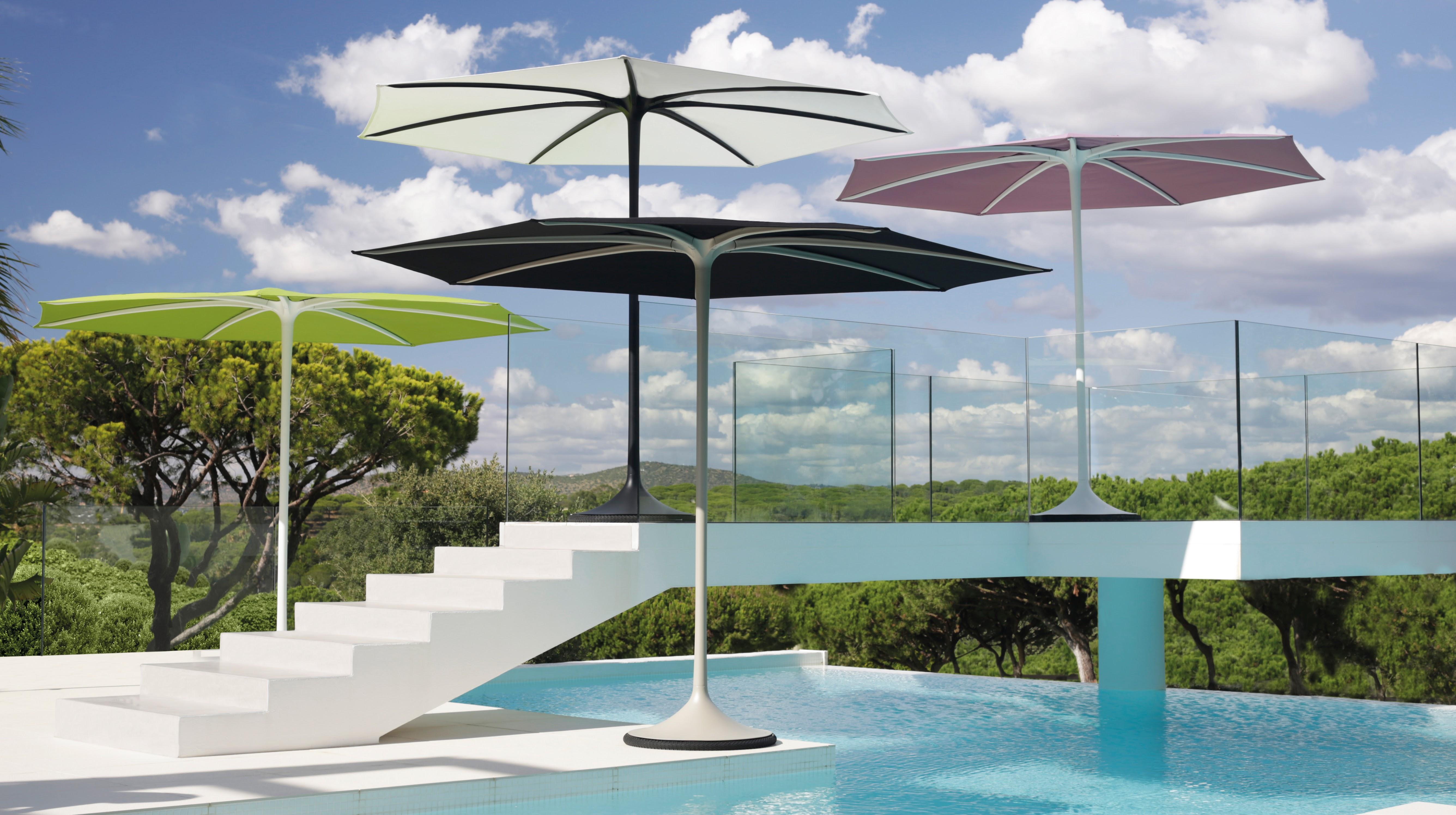 Palma Sonnenschirm Von Royal Botania Bruno Wickart Blog