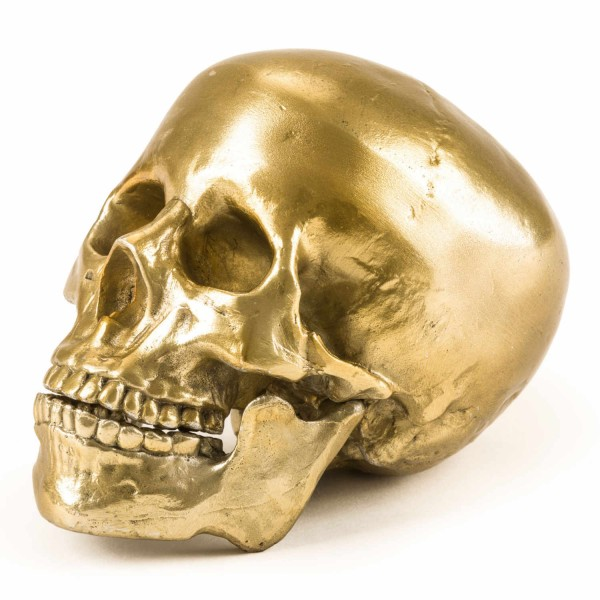 DIESEL LIVING with SELETTI Human Skull Culture Skulture Wunderkammer Skulptur 381_10891